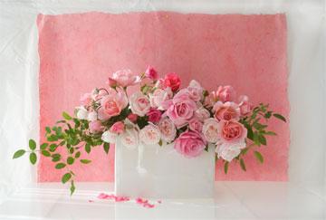 Ar-pink1