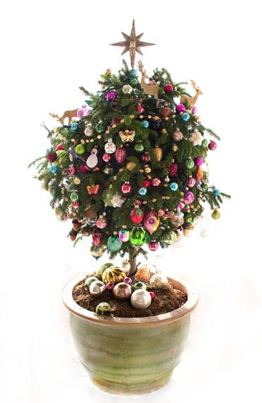 Ch-tree3