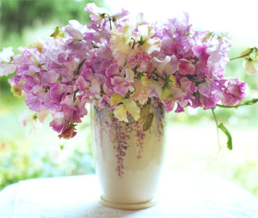 Sweetpea-bouquet