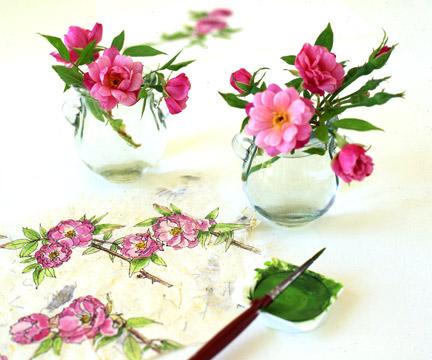 Rouletii-rose-painting