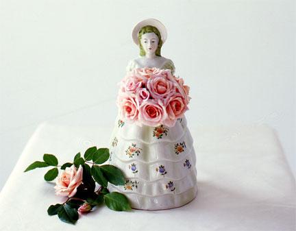 Cecile Brunner Rose History Cecile Brunner Roses in Vase