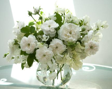Madame-hardy-bouquet