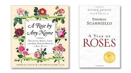 Stephen-scanniello's-books