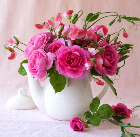 Sweet-peas-&-gertrude-jekyll-roses