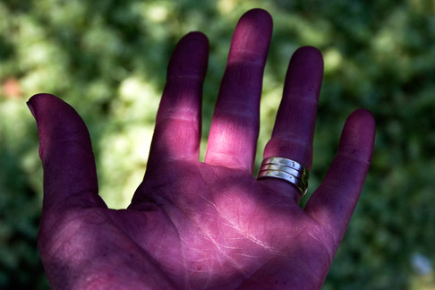 Grape-hand