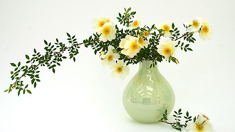 Happenstance Rose Bouquet