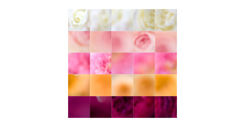 Five-color-rose-grid