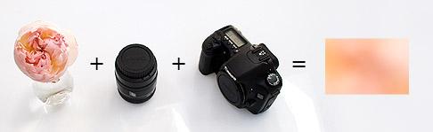 Canon-30D+macro-lens
