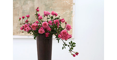 Monsieru-Tillier-Rose-in-Copper-Bucket