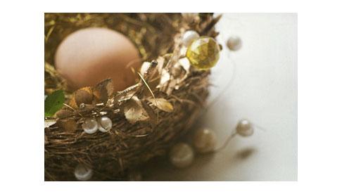 Nested-Egg