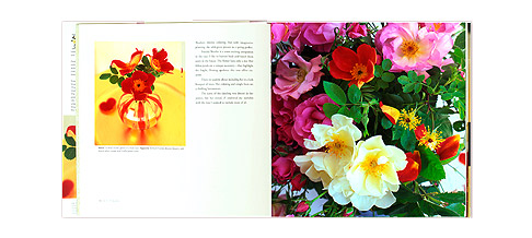 R-is-for-Rose-Book-Opened