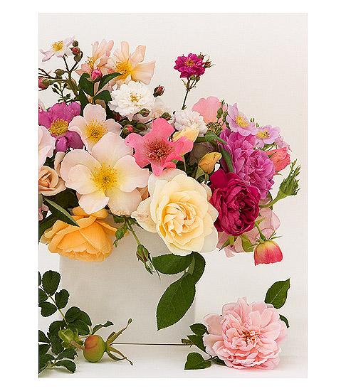 Roses-in-Box-Vase