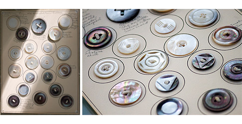 Old-Shell-Button-Display