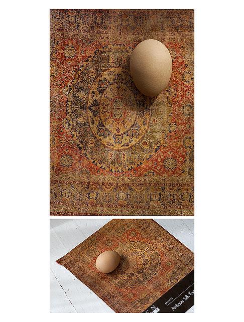 Brown-Egg-on-Carpet