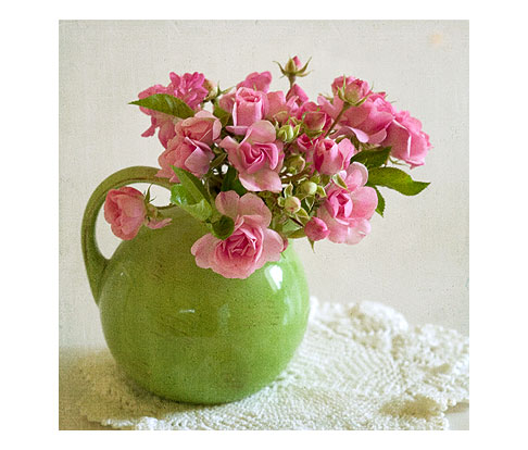 Peggy-Martin-Rose-in-Green-Pitcher