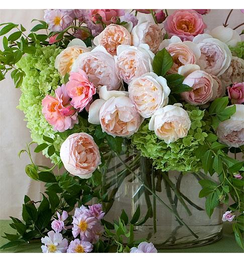 Pink-Roses-&-Hydrangea