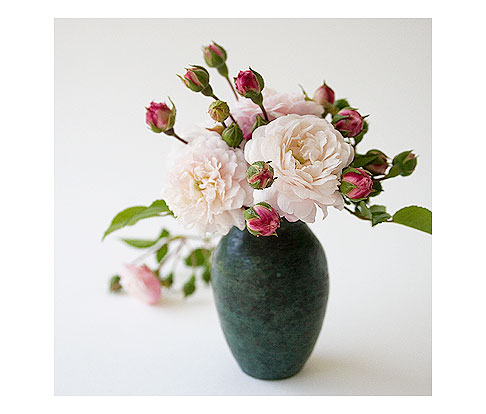 Marie-Pavie-in-Vase