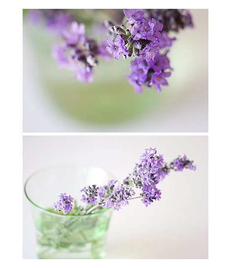Lavender-in-Glass