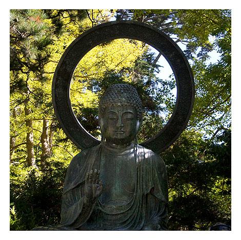 SF-Buddha