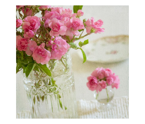 Peggy-Martin-Rose-in-Glass-Vase