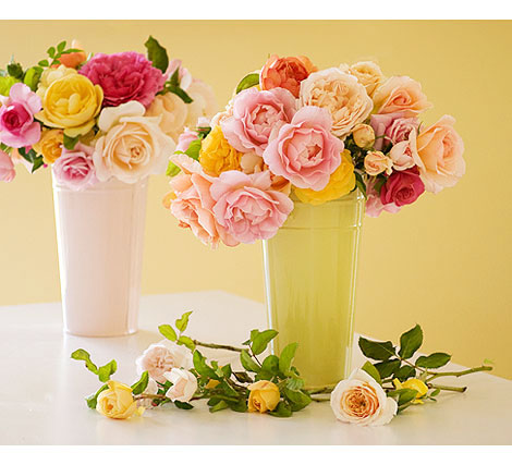 Buckets-of-Roses2
