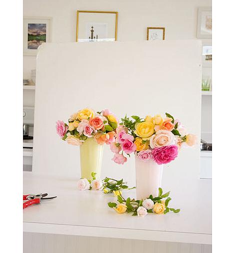 Photo-Setup-of-Roses