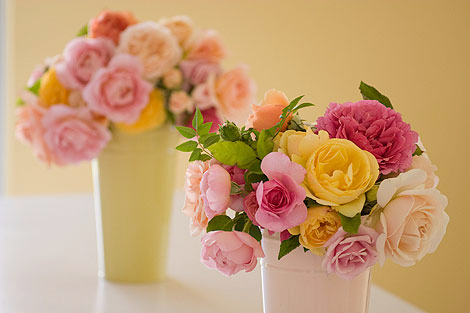 Roses-in-Buckets