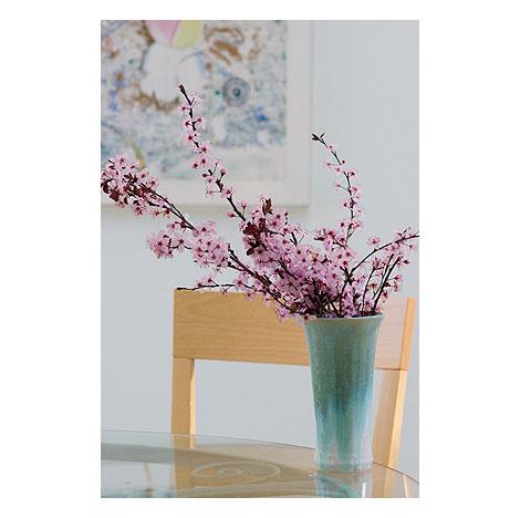 Plum-blossoms-in-vase