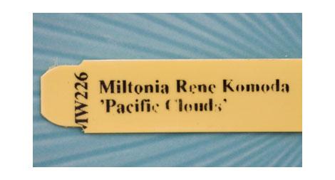 Miltonia-label