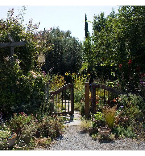 Barbara-Worl's-Garden