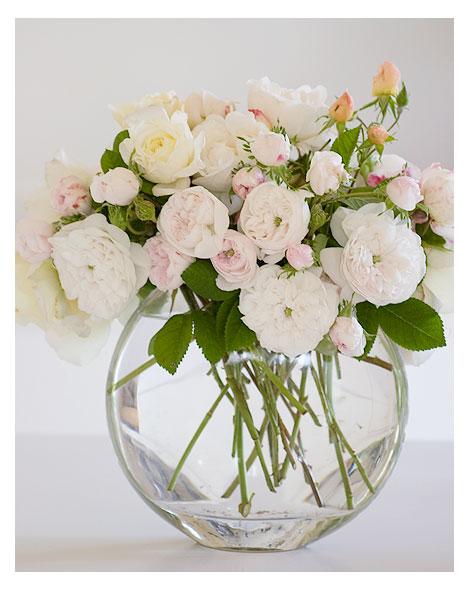 Vase-of-white-roses