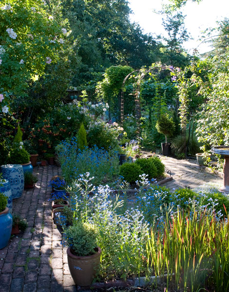 Blue-garden