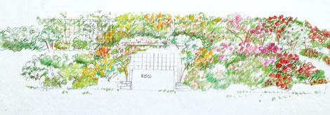 Rose-garden-plan-1