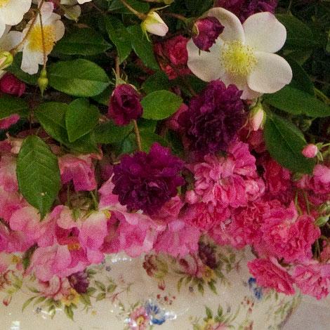Bouquet-close-up