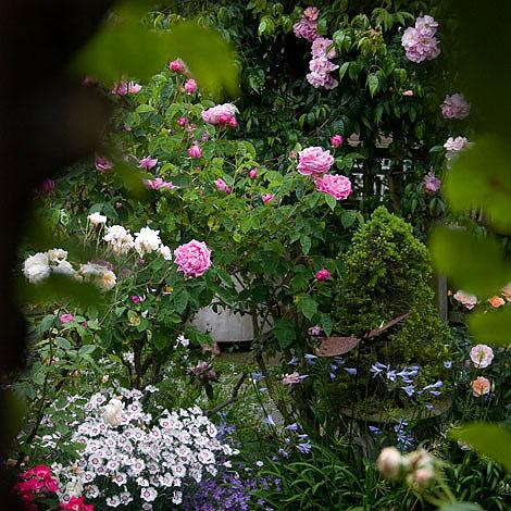 Secret-garden-2