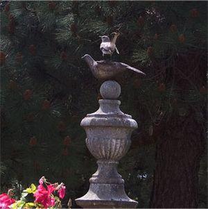 Bird-at-sacramento-cemetary