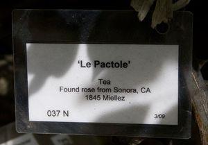 Le-pactole-sign