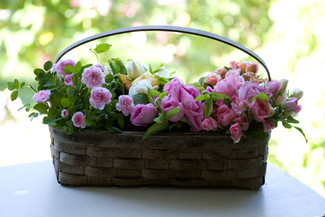 Basket-of-roses