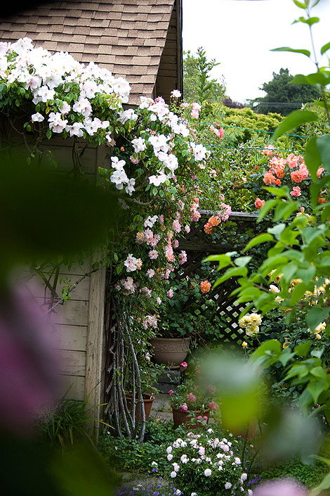 Secret-garden-3