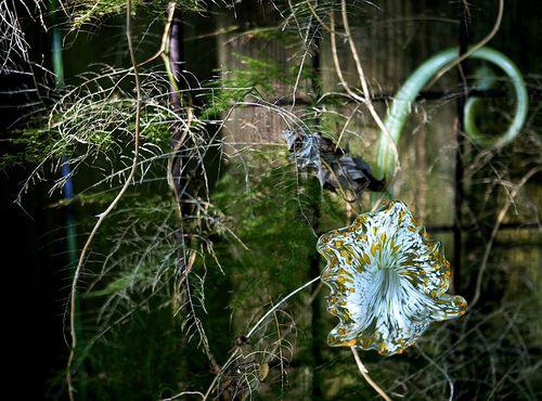 Glass_flower