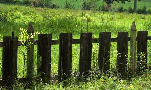 La-fence