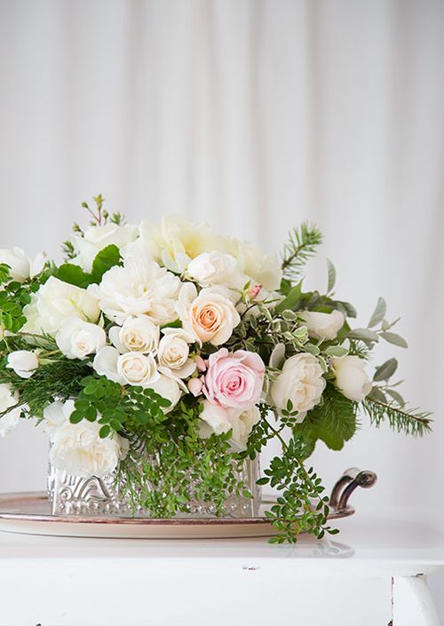 White-roses-for-christmas