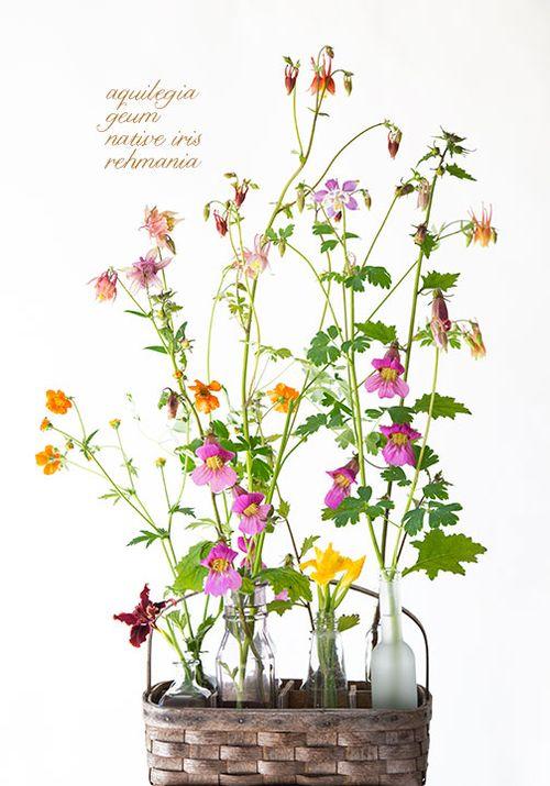 Botanical-basket