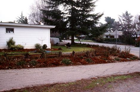 Early-corner-front-garden