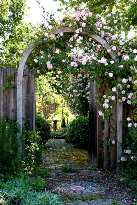 Renae-Rose-Arch