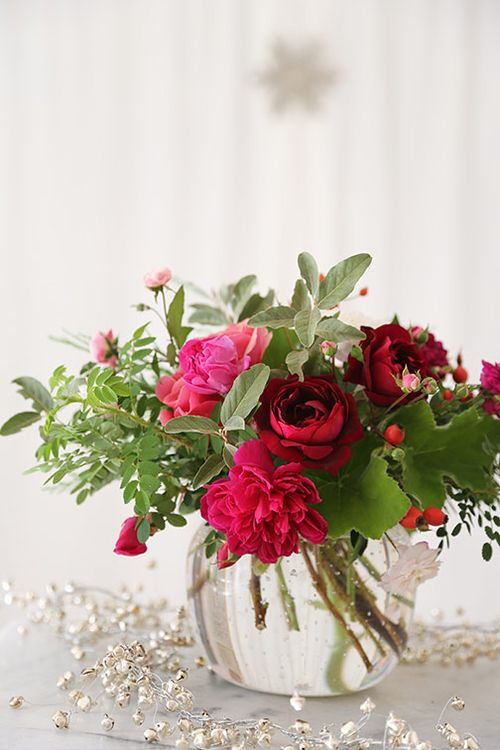 Red-christmas-roses