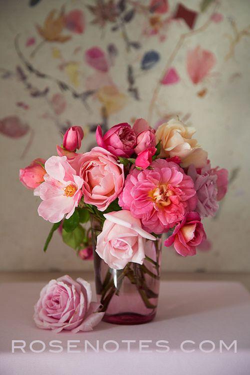 Rosenotes-pink-glass