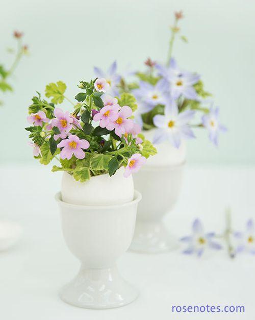 Flowers-in-eggshells
