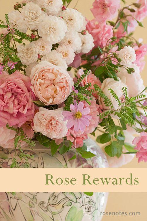 Close-up-rose-arrangment-cop1y
