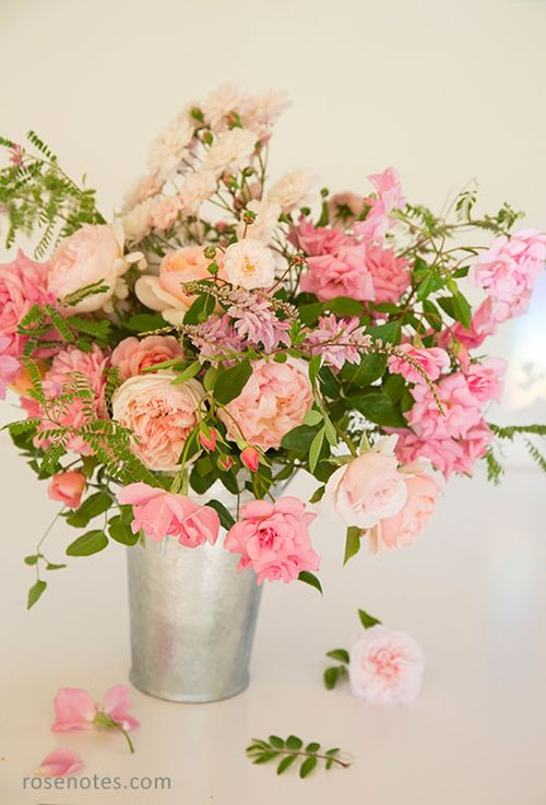Bucket-of-pink-roses-small-copy